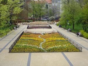 Blumen, zaun, garten, pflanzen, menschen, bank