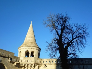 castle, building, tree, sky, history, architecture, wall