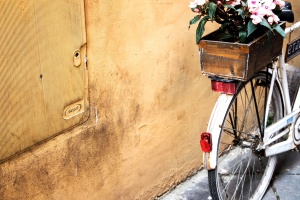 bicycle, flowers, old, antique, object