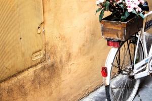 Polkupyörä, kukkia, vanha, antiikkiesine