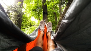 shoes, recreation, relaxation, summer, tree, legs, fun