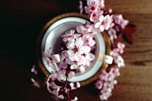 vase, wooden, beautiful, bloom, flowers, decoration, bouquet