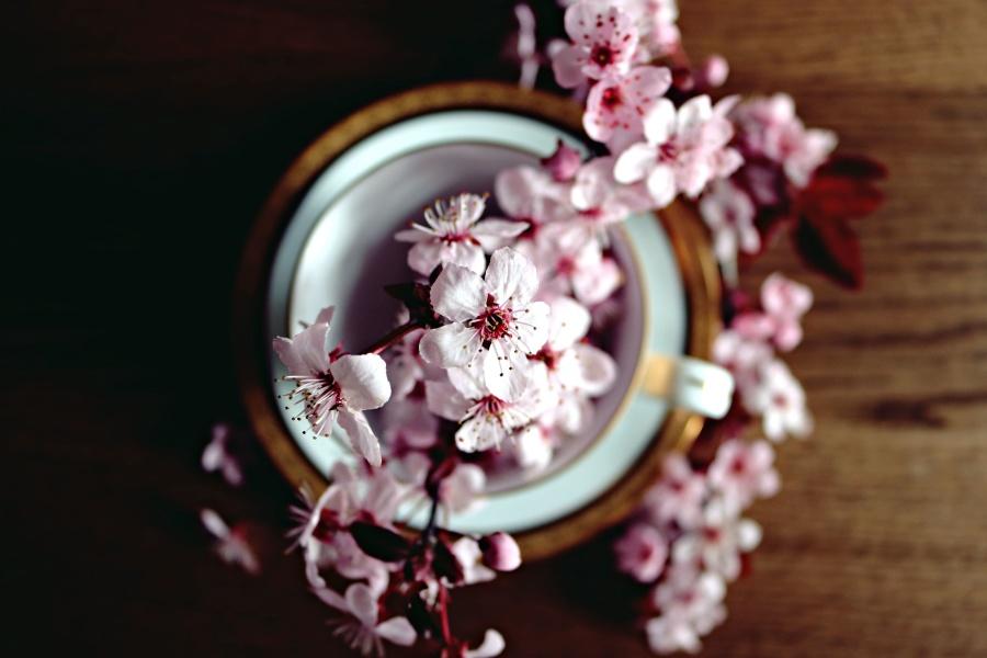 Vase, hölzern, schön, blüte, blumen, dekoration, blumenstrauß
