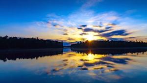 Árbol, agua, lago, naturaleza, cielo, sol