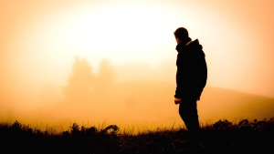 person, silhouette, fog, man, jacket, grass