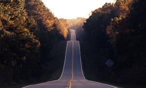 yol, way, ormanda, asfalt, yokuş aşağı, ciğeri, Otoban, peyzaj