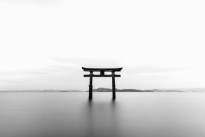 물, 나무, 문, 건축, 아시아