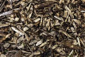 Legna da ardere, struttura, legno, struttura