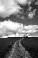 field, landscape, nature, road, sky, tree, cloud, farm, farmland