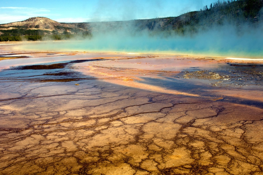 Primavera, geyser, calore, lago, paesaggio, nebbia, natura