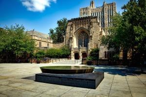 exterior, biblioteca, árvores, Universidade, arquitetura, construção