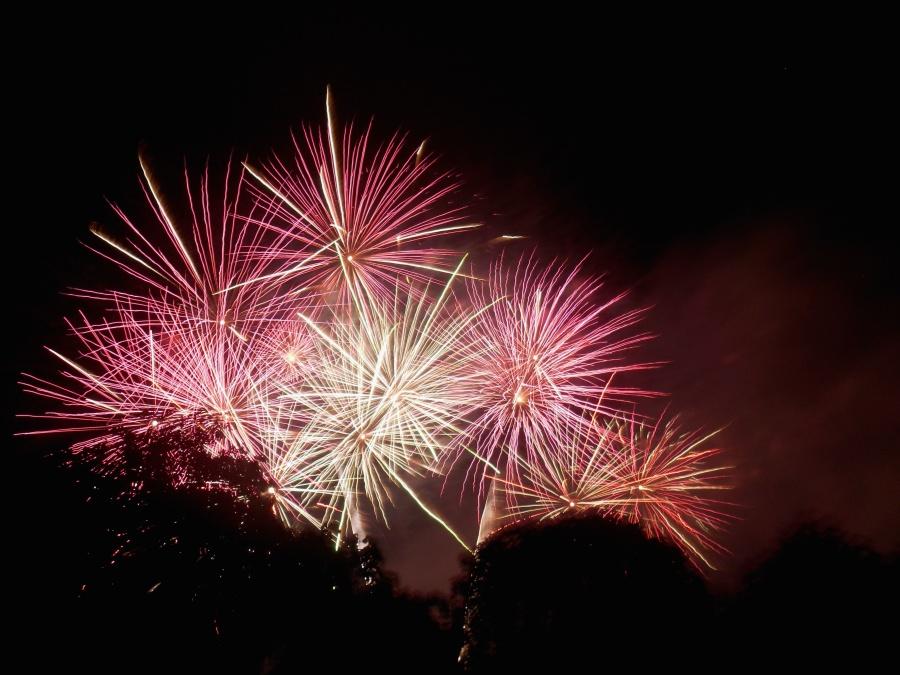 dobrou noc, oslavovat, jiskry, strom, festival, ohňostroj, flash, osvětlená