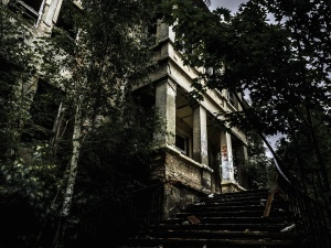 staircase, trees, window, abandoned, building, architecture, building
