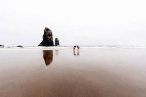 Les gens, les roches, le sable, la mer, la plage, la nature, le ciel, l'eau, les vagues