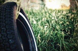 summer, tire, field, fun, garden, grass, landscape