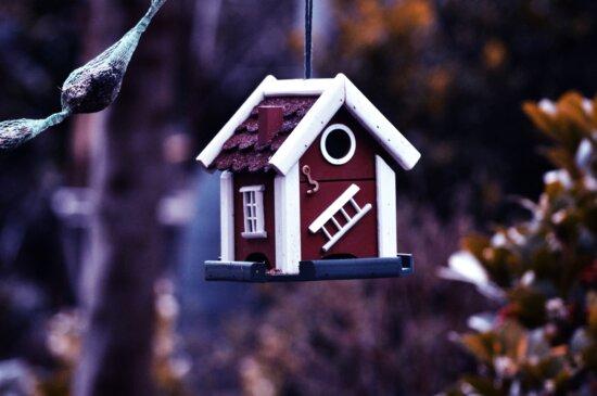 Appendere, casa, birdhouse, giardino