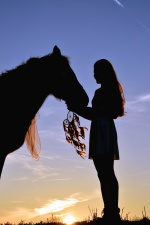 girl, silhouette, horse, love, person, recreation