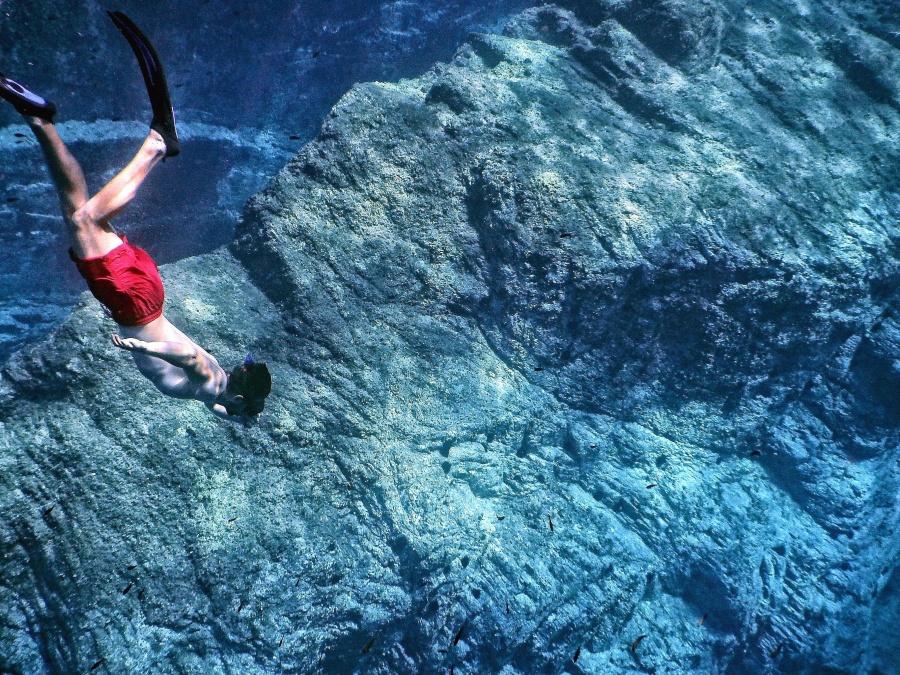 Coralli, mare, subacqueo, immersioni, esplorazione, hobby, acqua, sport