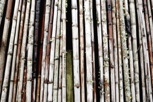 bamboo, texture, wall, woods, design, fence