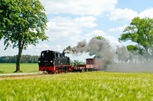 Steam silnik, Parowa lokomotywa, kolej, kolejowe, pociąg, niebo, dymu, transportu, drzew