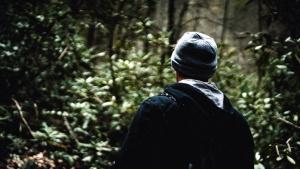 Persona, alberi, bosco, paesaggio, uomo, natura, foresta