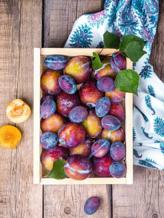plum, food, fresh fruits, garden, health, confection, crate