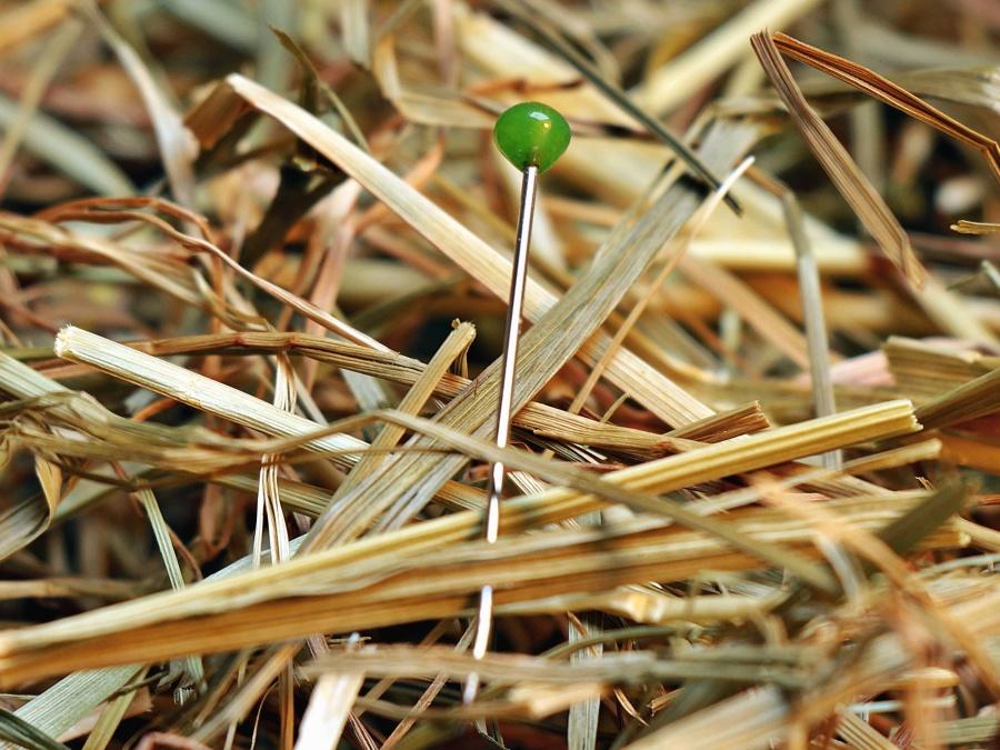 igla, oštar, slame, teksture, drva, trava, sijeno, lišće