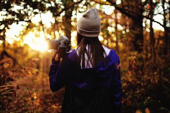 Arbres, femme, bois, caméra, forêt, personne