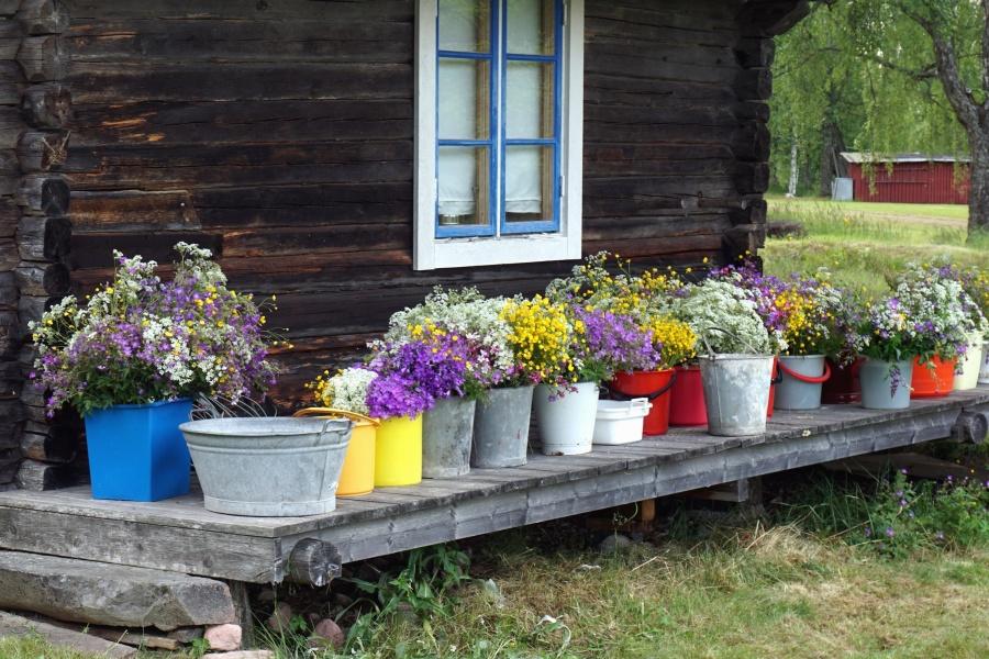 flowers, house, wooden, window, bucket