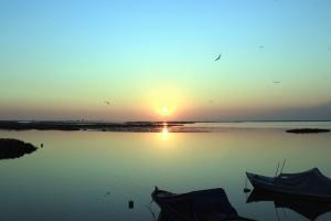 søen, sunset, vand, båd, landskab, fugle