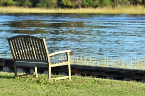 bench, grass, river, nature, wooden, coast