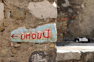 Katze, Wand, Graffiti, Haustiere, Ziegel, Stein