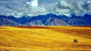 langit, musim panas, perjalanan, lembah, pertanian, awan, tanaman, bidang