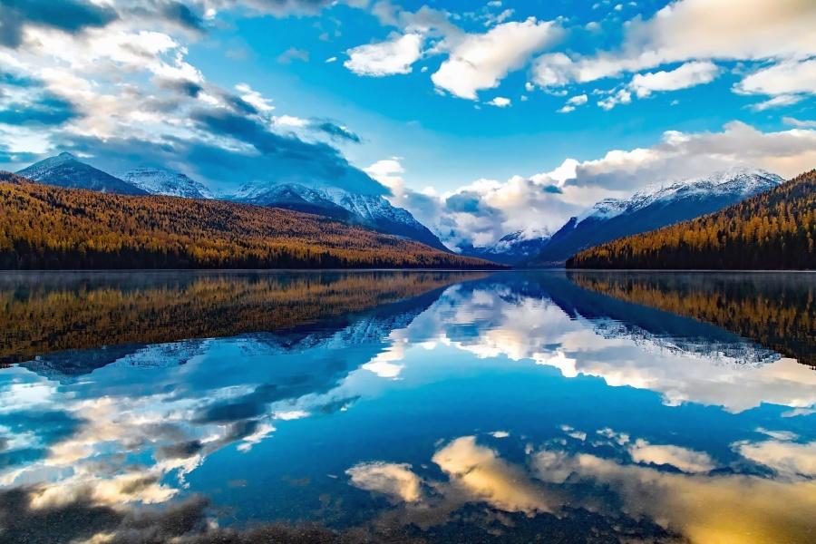 倒影, 河流, 云彩, 湖泊, 树木, 水, 荒野