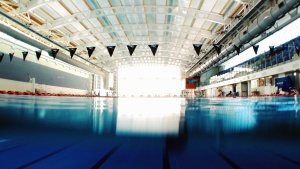 swimming pool, olympic, water, swimming, training, sport
