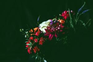 Fleurs, pétales, nature, bouquet, art, décoration