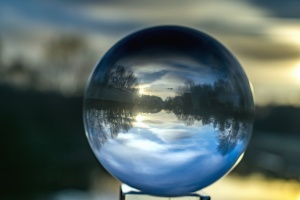 sphere, transparent, tree, river, nature, glass, water