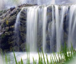 stein, vann, elv, foss, plante, blad