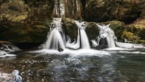 Cascadas, agua, mojado, naturaleza, bosque, madera