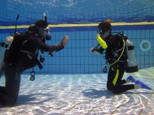 Plongeur, piscine, sous l'eau
