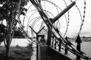 Filo, recinzione, metallo, acciaio, legno, erba