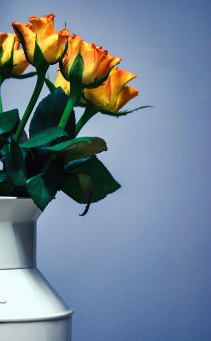 Vase, blumenstrauß, rosen, dekoration, zimmer