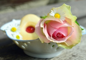 rose, petal, flower, bowl, table, ceramics