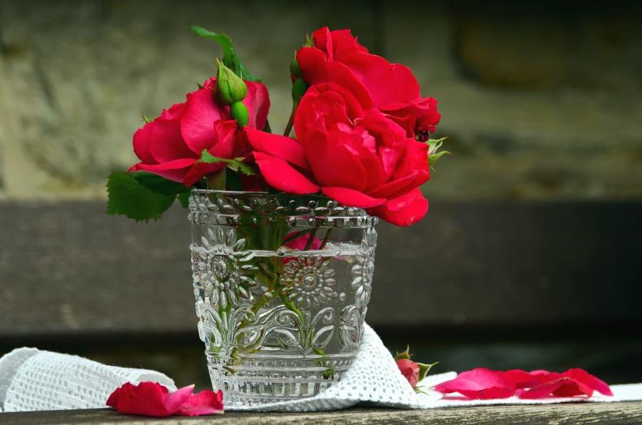 Vase, Blume, Rose, Stillleben, frisch