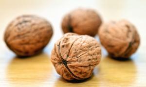shell, wood, food, walnut