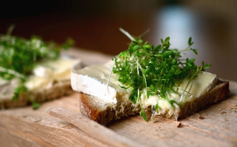 kruh, doručak, sir, salata