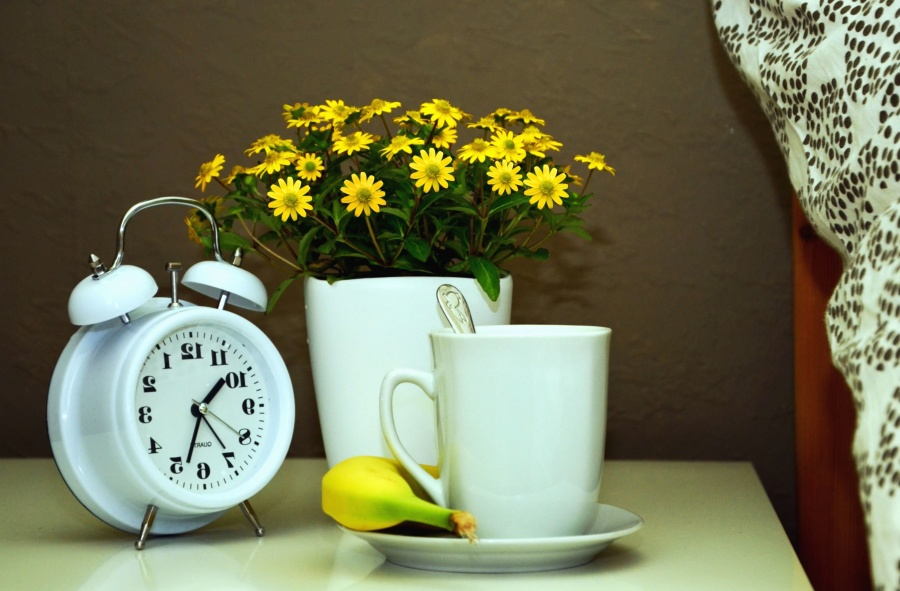 Pot, fleur, horloge, nature morte, tasse, thé