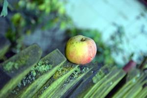 Apple, плодове, ограда, дървени