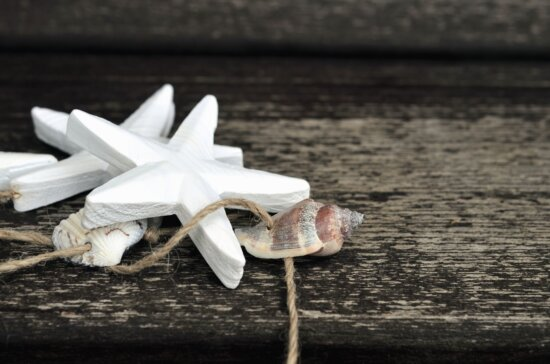 star, seashell, rope, wood, table