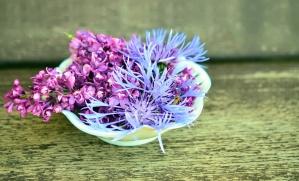 Hoa, bàn gỗ, bát,
